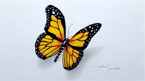Pretty Butterfly Drawings