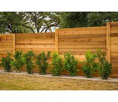 Best Privacy fence options diy