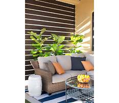Best Privacy fence options diy halloween