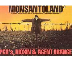 Best Purely positive dog training book.aspx