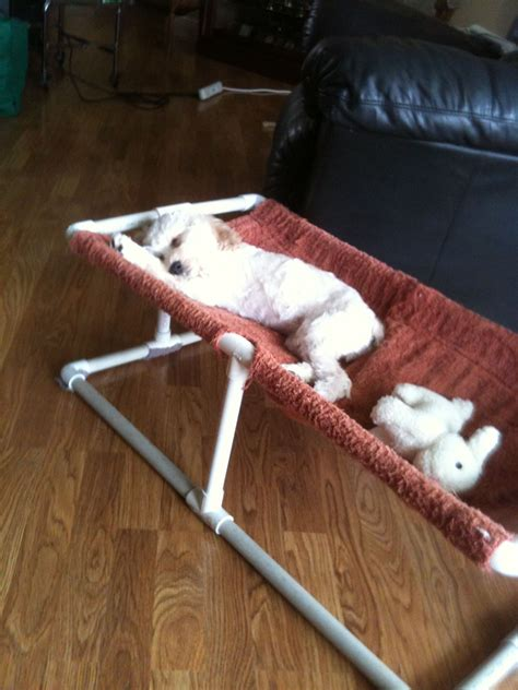 Pvc-Pipe-Dog-Bed-Plans