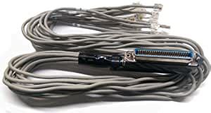R.J. Enterprises - Amphenol Telco (Female) Cable to 6 RJ45, 3 Feet