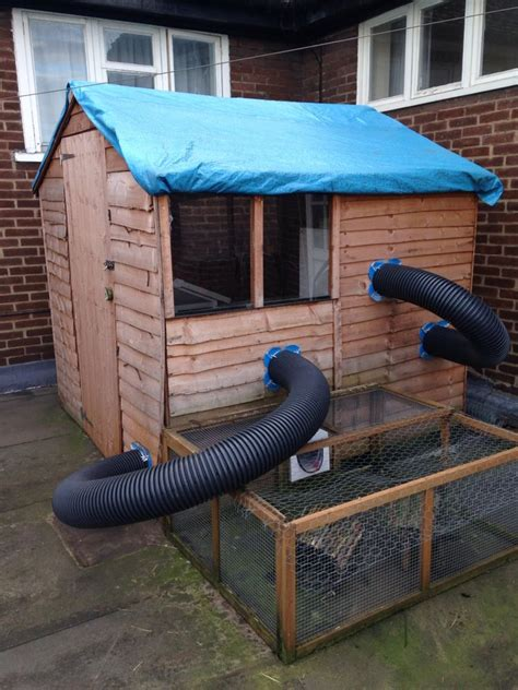 Rabbit Hutch Shed Ideas