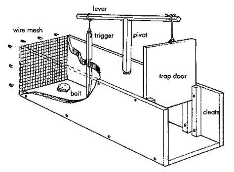 Rabbit-Trap-Woodworking-Plans