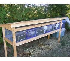 Best Rabbit building designs