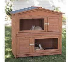 Best Rabbit hutch double decker dimensions