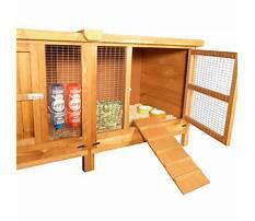 Best Rabbit hutch replacement ramp