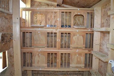 Racing-Pigeon-Nest-Box-Plans