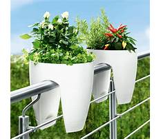 Best Railing flower boxes uk