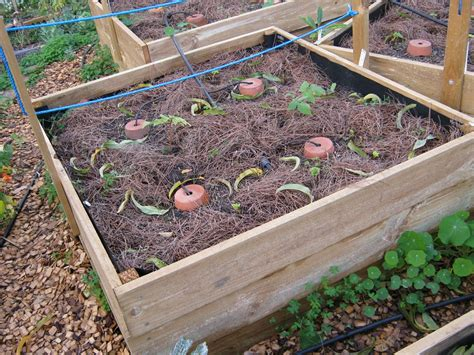 Raised Bed Deep Irrigation Diy Fire