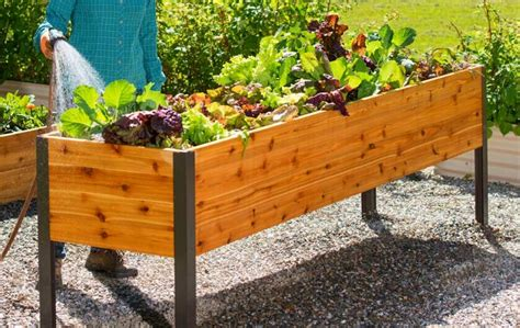 Raised Container Garden Box Plans