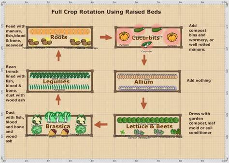 Raised-Bed-Crop-Rotation-Plan