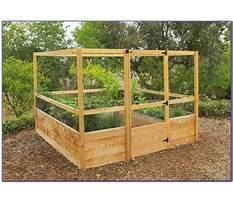 Best Raised bed garden kits canada