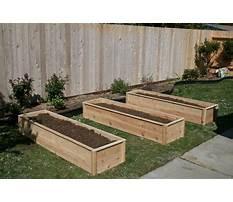 Best Raised garden bed cedar.aspx
