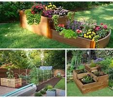 Best Raised gardening beds.aspx