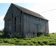 Best Recycle wood colorado