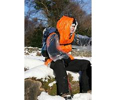 Best Rescue in training dog vest.aspx