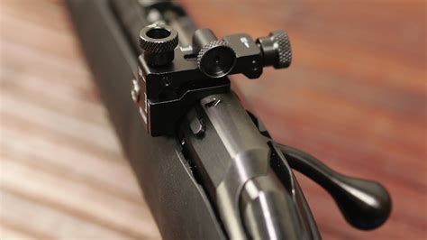 Ruger American Rimfire Williams Peep Sights.