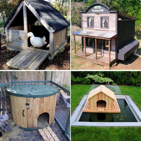 Runner-Duck-House-Plans