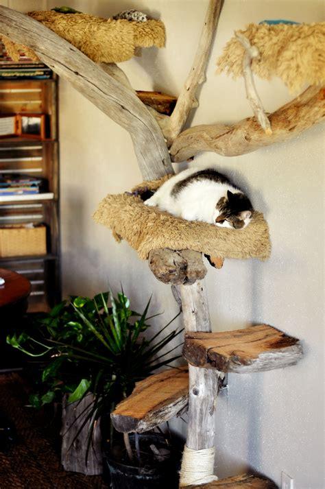 Rustic-Cat-Tree-Plans