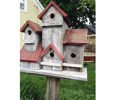 Best Rustic recycled bird house for sale