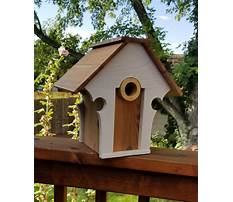 Best Scrap wood birdhouse plans