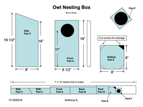 Screech Owl Nesting Boxes Plans