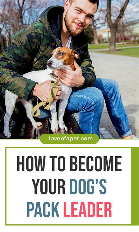 [pdf] Secrets To Becoming The  Alpha Dog   Be Your Dog  S Pack .