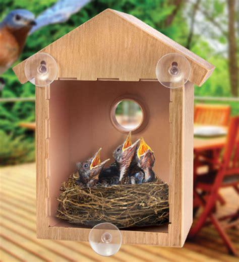 See-Thru-Mirror-Bird-Feeder-Plans