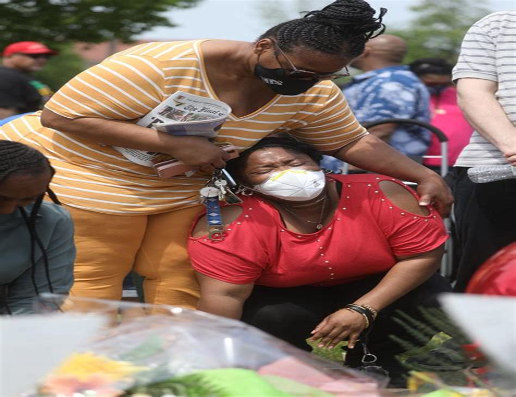 Semi Auto Assault Rifles And 65 Grendel Assault Rifle