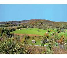 Best Sheds for sale by owner.aspx