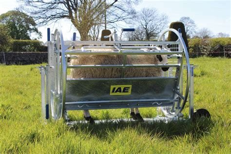 Sheep-Turnover-Crate-Plans
