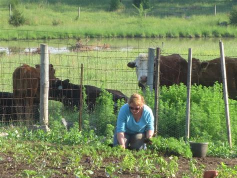 Shenandoah-Valley-Farm-Tables
