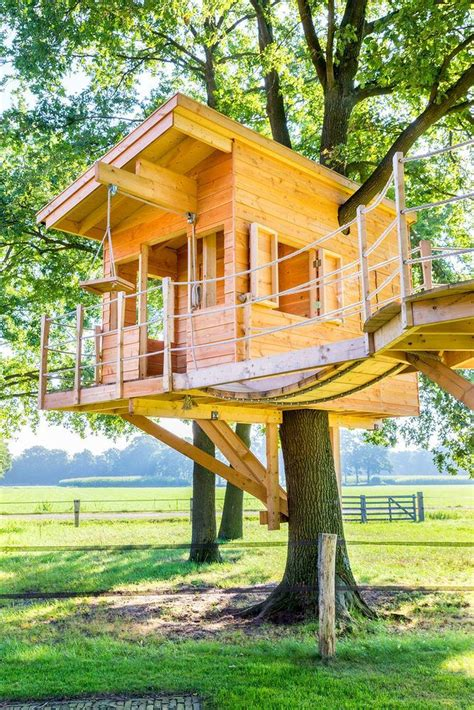 Simple Backyard Treehouse Designs