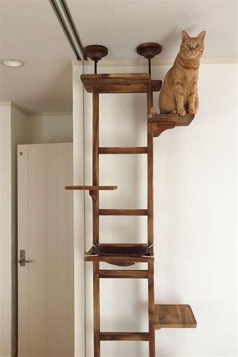 Simple Cat Tree Plans DIY Smelting