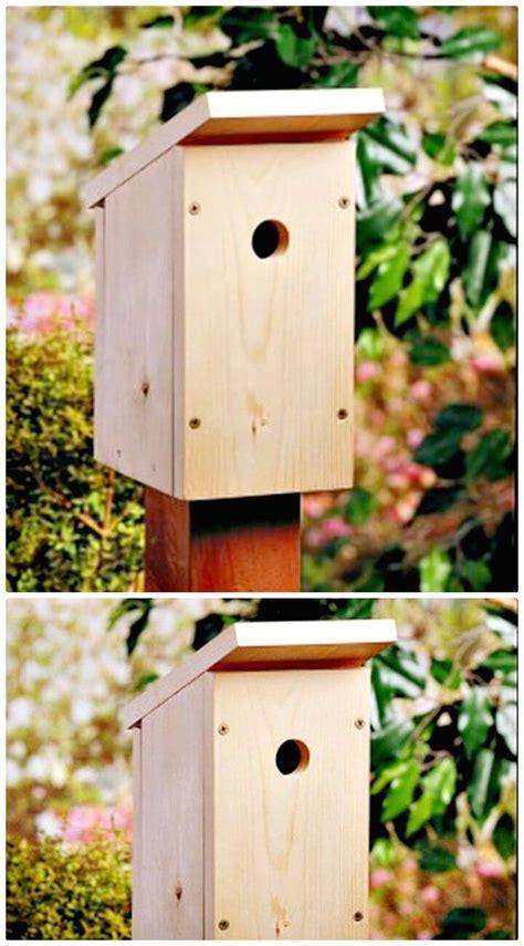 Simple-Birdhouse-Diy