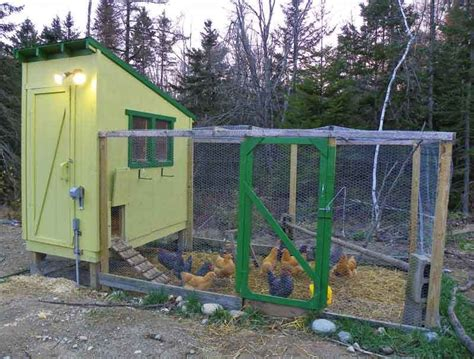 Simple-Chicken-Coop-Plans-For-6-Chickens
