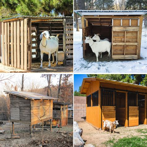 Simple-Goat-Shed-Plans