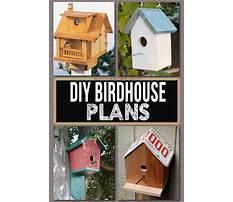 Best Simple birdhouse designs