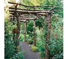 Best Simple rustic arbor