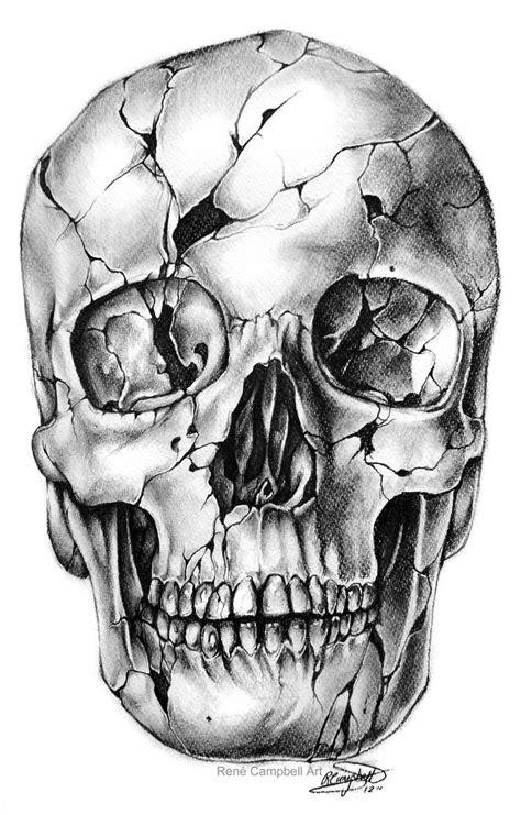 Skull Sketches Drawings
