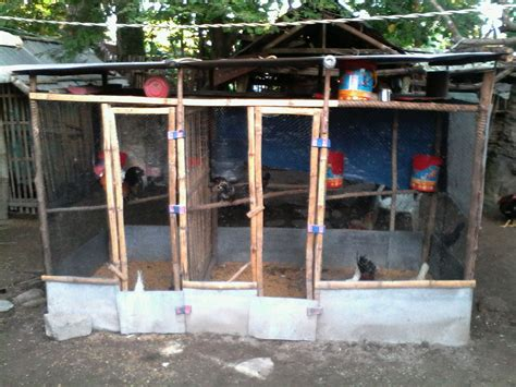 Small Chicken Cage Plans Philippines Entertainment