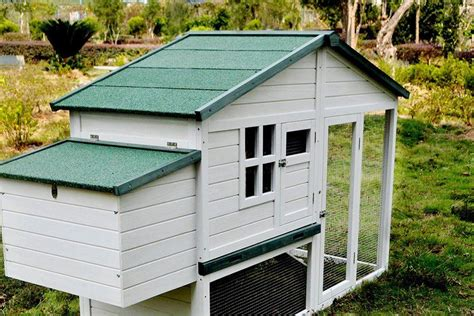 Small Chicken Coop Blueprint