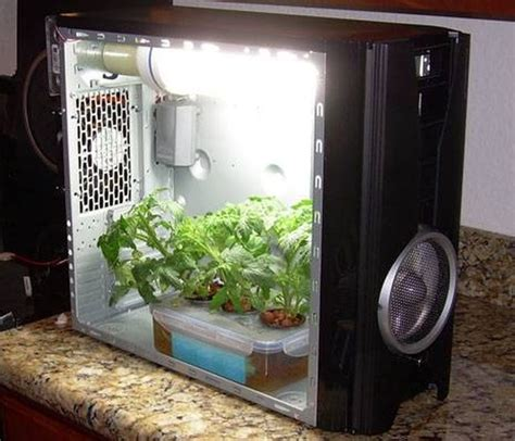 Small Grow Box Diy