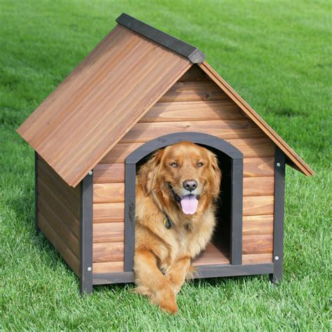 Small-Dog-Kennel-Plans