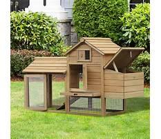 Best Small chicken coop kit