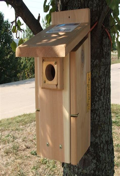 Songbird-Bird-House-Plans