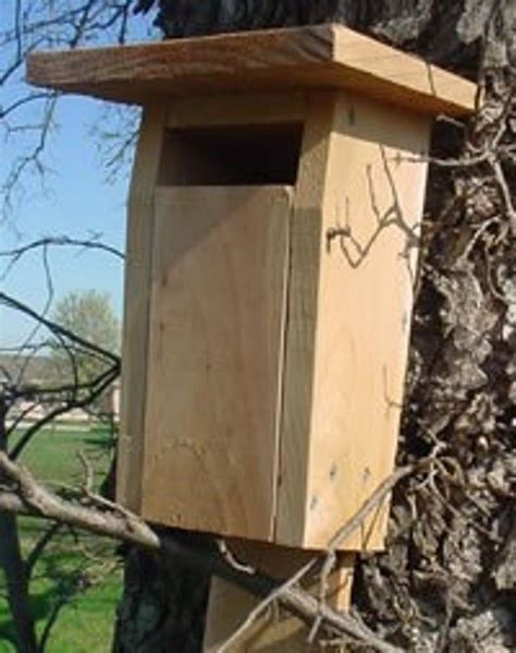 Sparrow Proof Bluebird House Plans Free