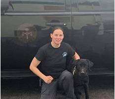 Best Special forces dog training.aspx