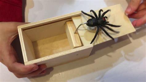 Spider-In-A-Box-Diy